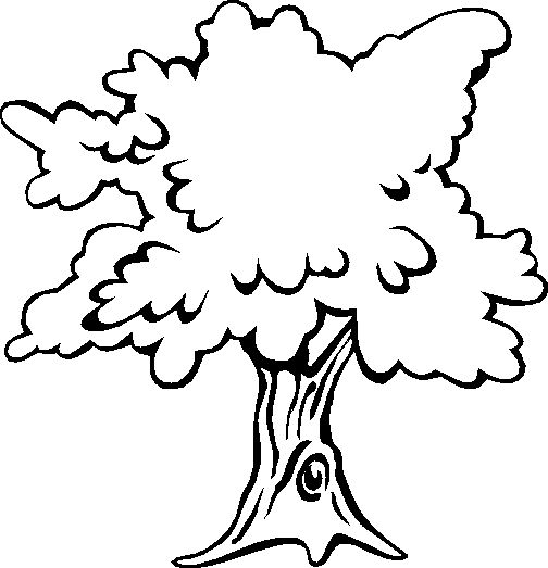 раскраска деревья в разные времена года